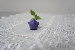 桔梗2.JPG